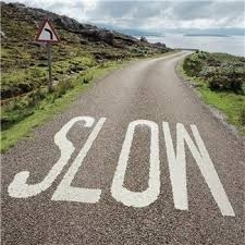 How to slow things down in business so that profits can speed up