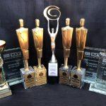 Stone Business Coaching Mentoring Awards